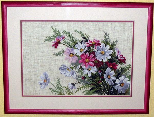 Космеи. Растения (в основном цветы)