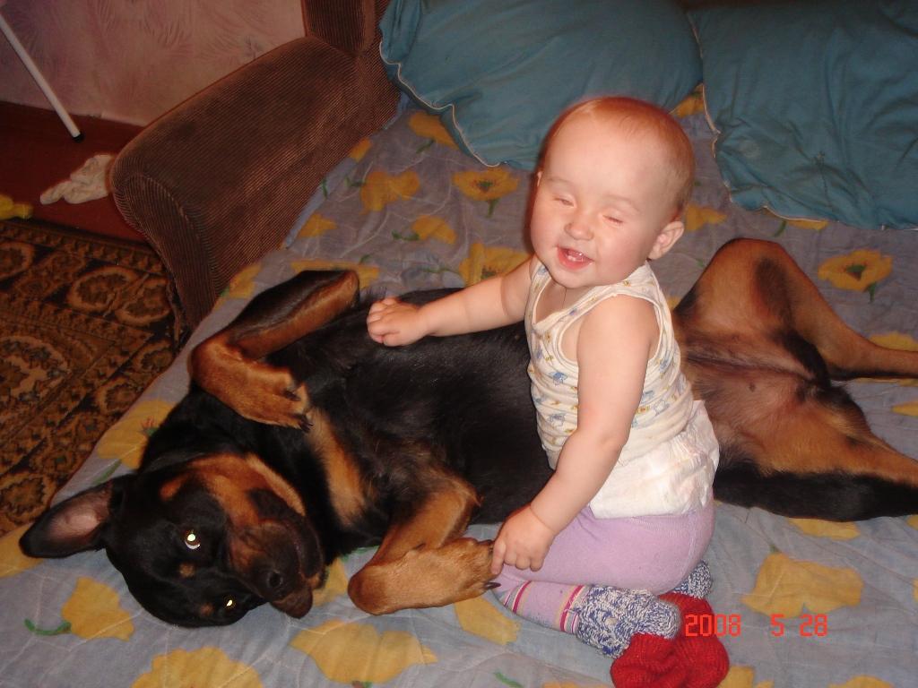 Ой, какая же ты мягкая! Сегодня ты будешь моей подушкой.. Дай лапу,  друг