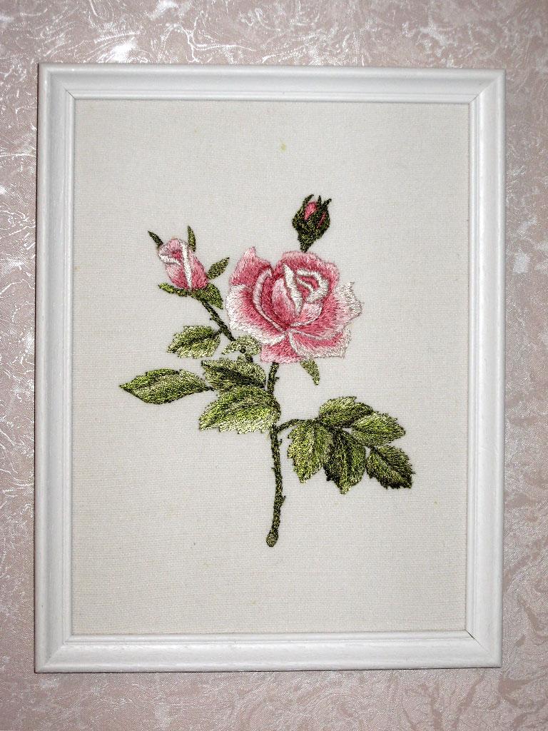 Роза. Растения (в основном цветы)