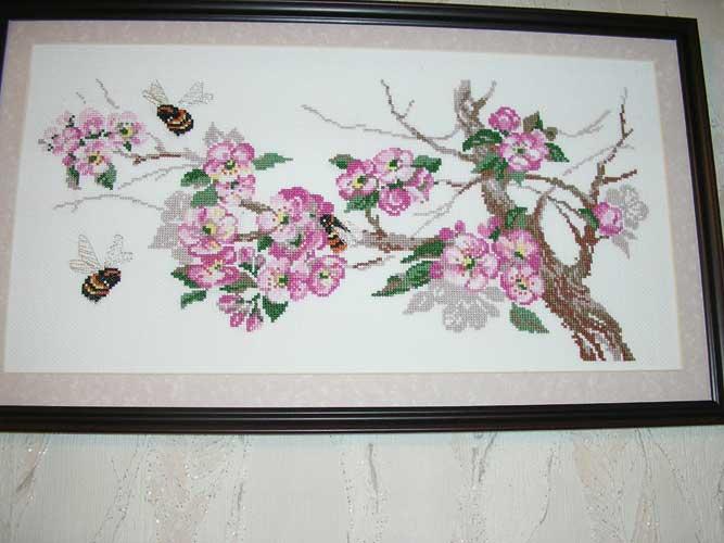 Яблоневый цвет. Растения (в основном цветы)