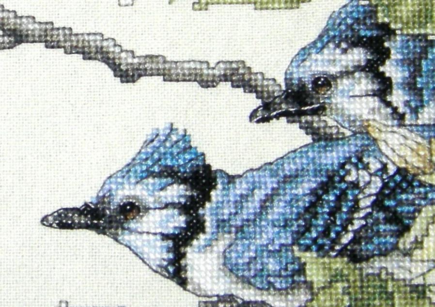 Птицы - глаза (фрагмент вышивки 2007 года). Птицы