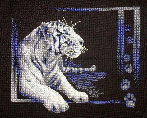 тигр. Животные