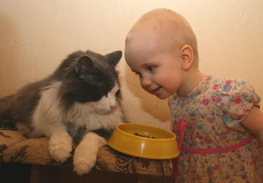 Кушать будешь? :). Мой усатый-полосатый