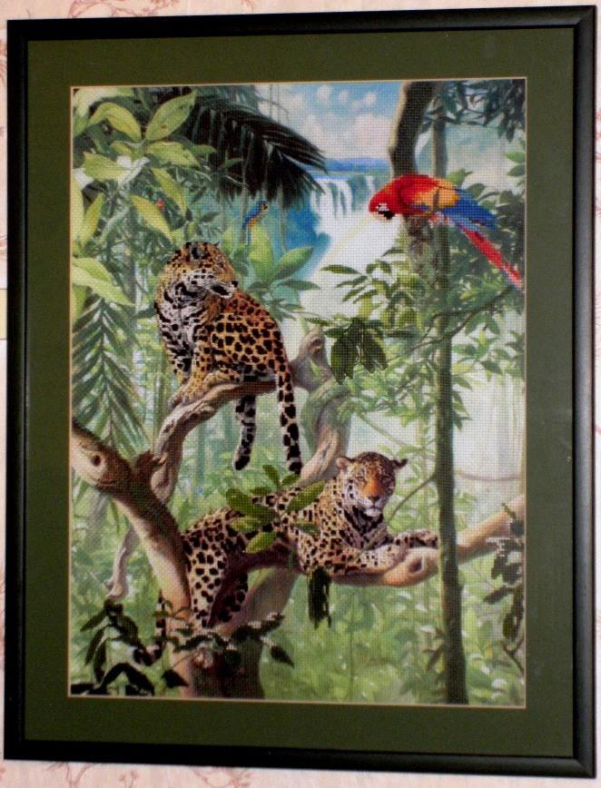 Водопад  Амазонии. Животные