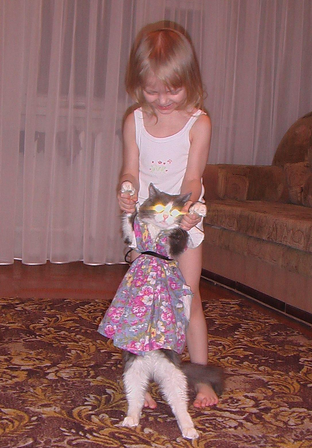Пока учу танцевать кошку, вырасту - буду тигров дрессировать. Готовьтесь....тигры!. Мой усатый-полосатый