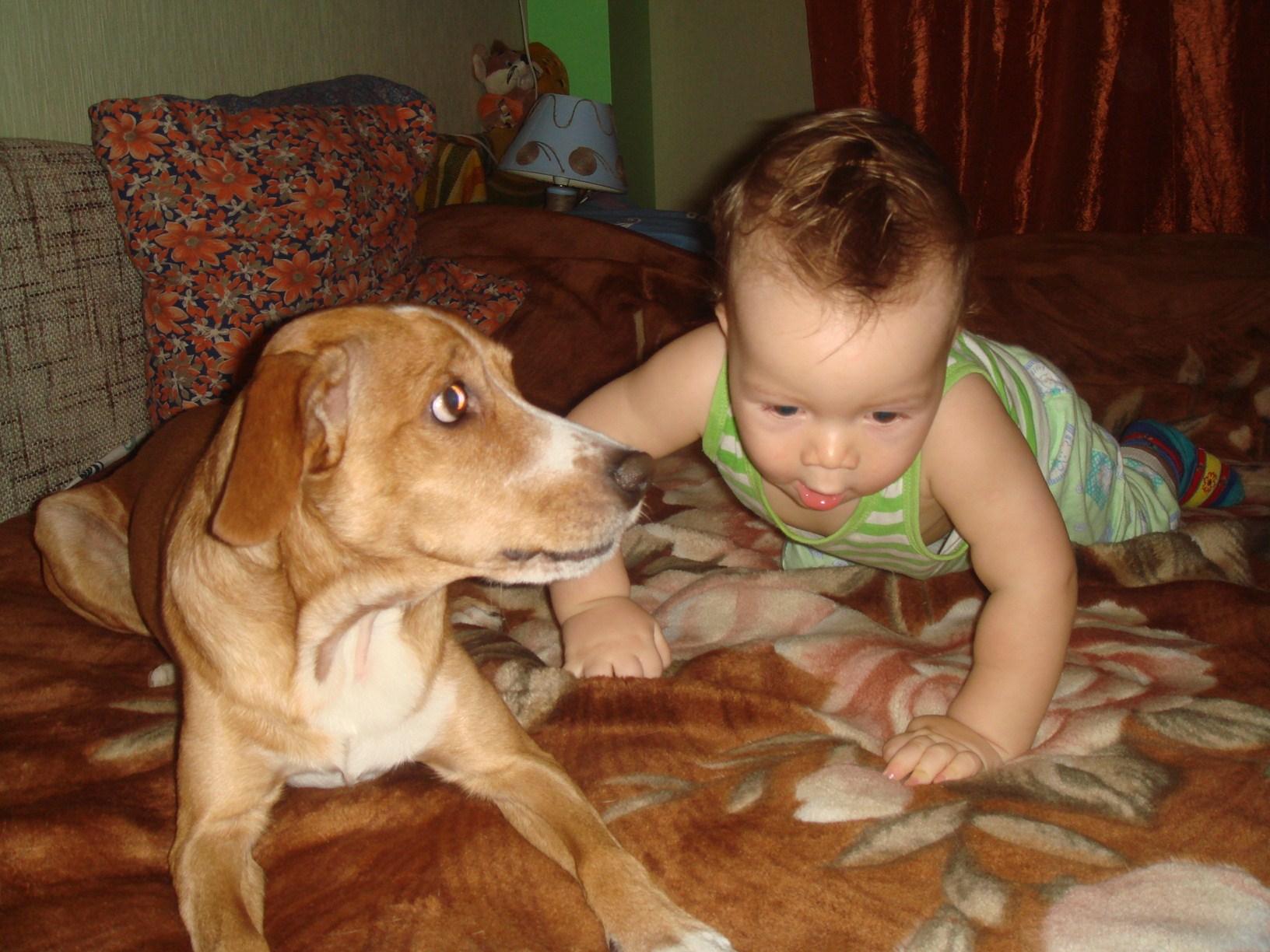Это я со своей собакой. Ребята и зверята