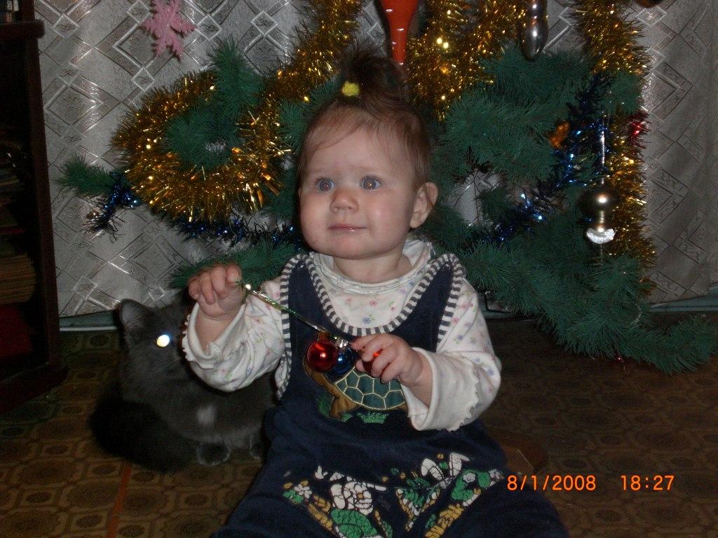Чудесный праздник - Новый год!!!. Моя новогодняя ёлка