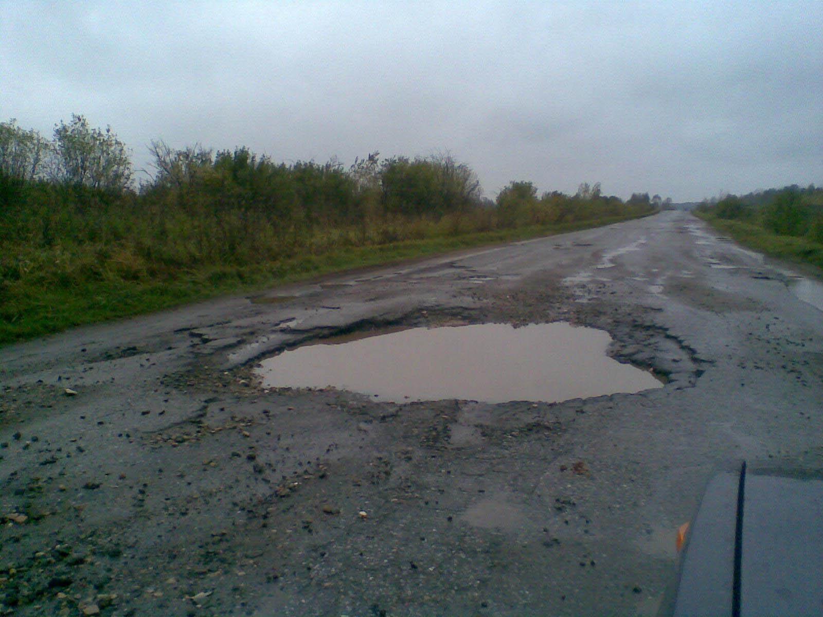 здесь упал слон... . Новгородские дороги