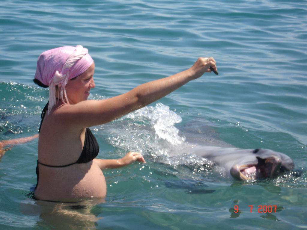 Дельфин - положительные эмоции в моём положении. Мамина улыбка