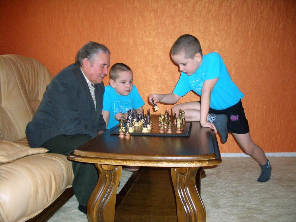 шахматный турнир. Закрытое голосование фотоконкурса 'Стар и мал '