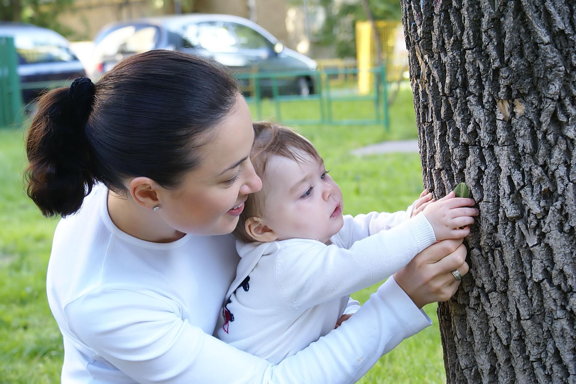 Листочки растут на дереве ! . Вместе с мамой
