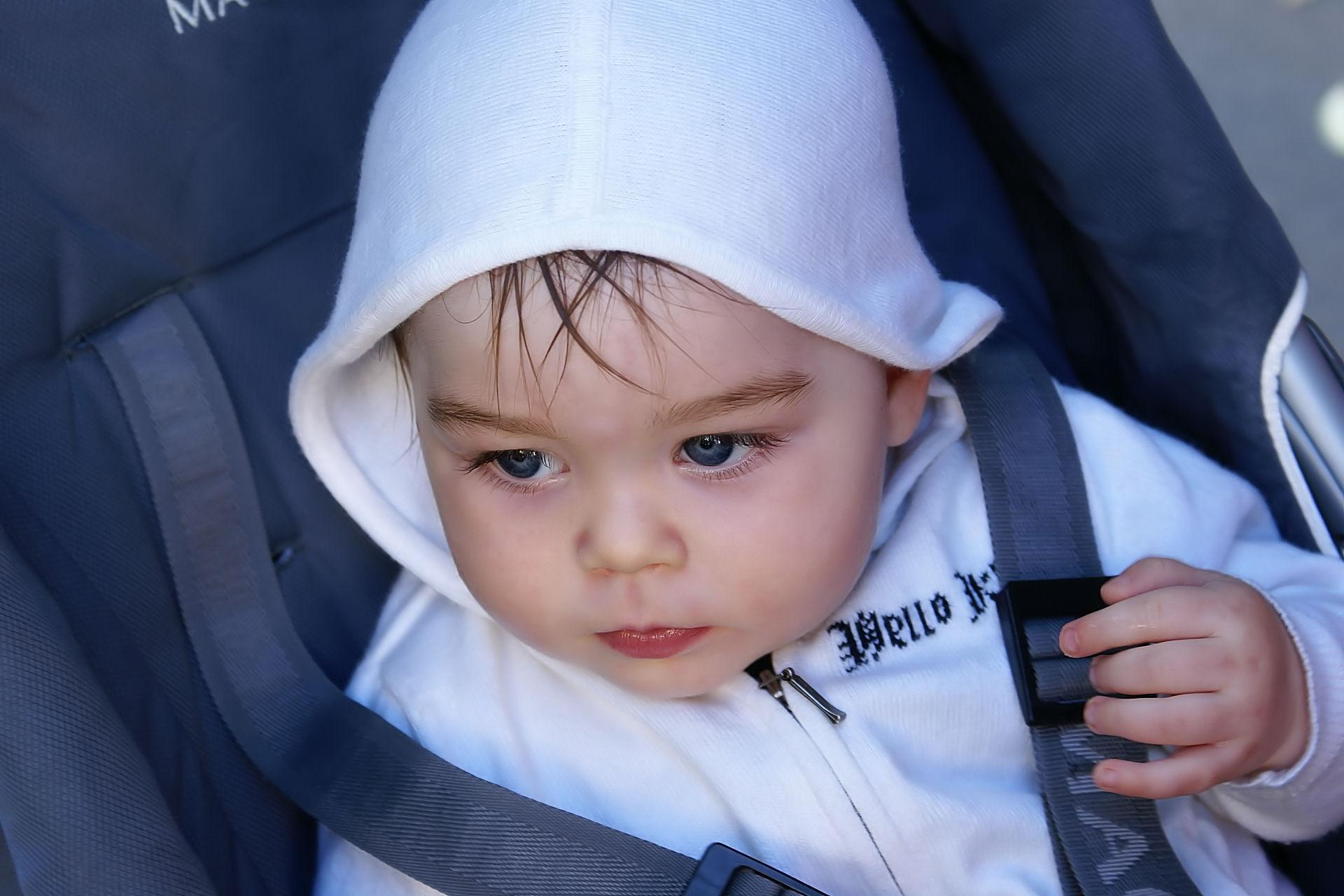 Анютены глазки . Дети в колясках