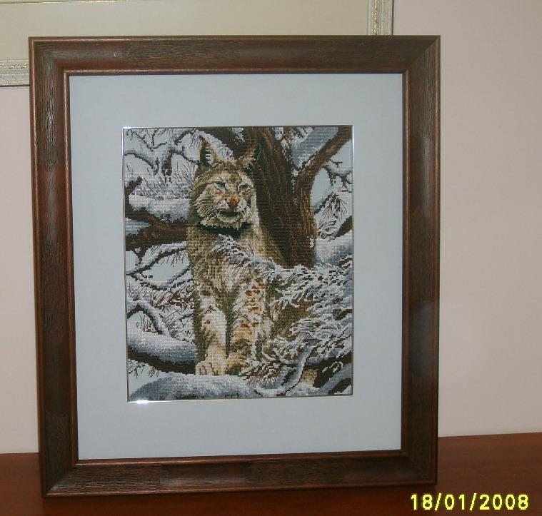 DMC_K5256_ Siberian Lynx. Животные