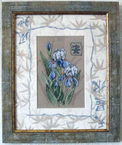 Ирисы. Растения (в основном цветы)