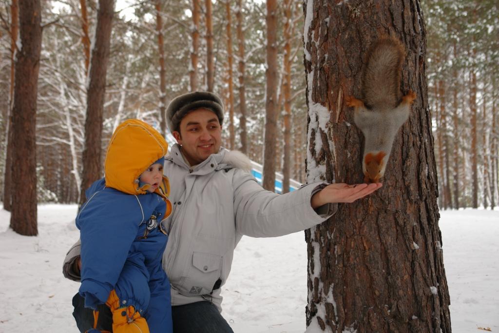 хорошо зимой в зимнем лесу..... Зимняя прогулка