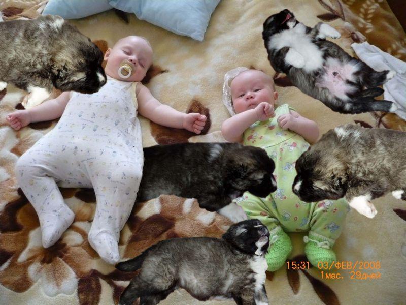 Детки спят. Фотоколлажи, обработанные фото