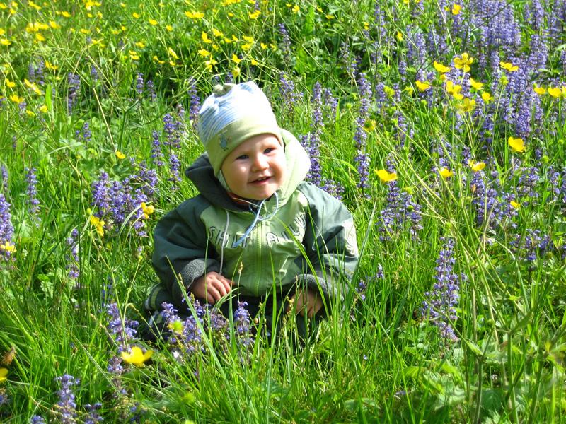 В траве сидел кузнечик. Весенние деньки