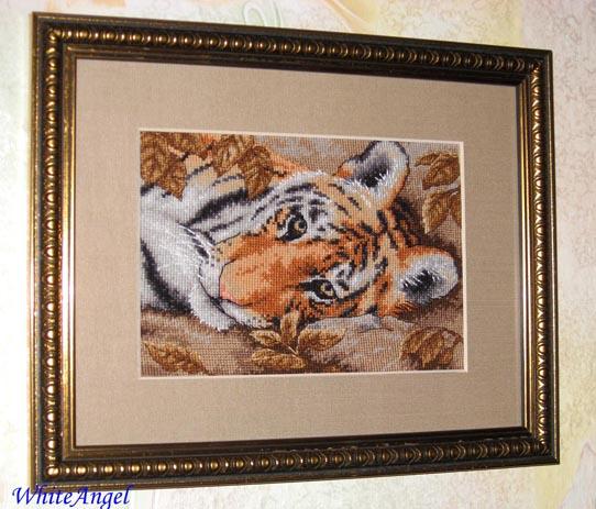Dimensions 65056 - Beguiling Tiger. Животные