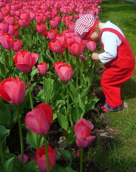 Аришкина весна!. Весенние деньки