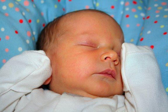 Тимоша. Новорожденные