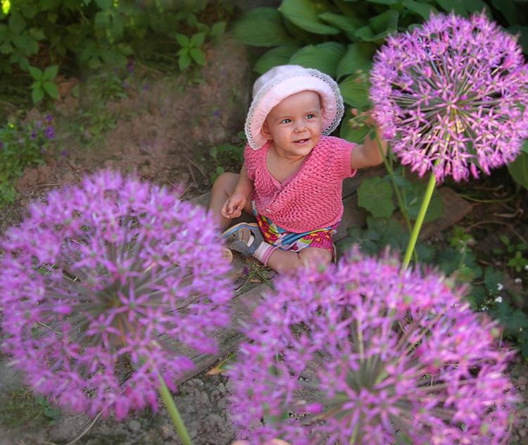 В селе Летово все фиолетово :-). Маленькие исследователи