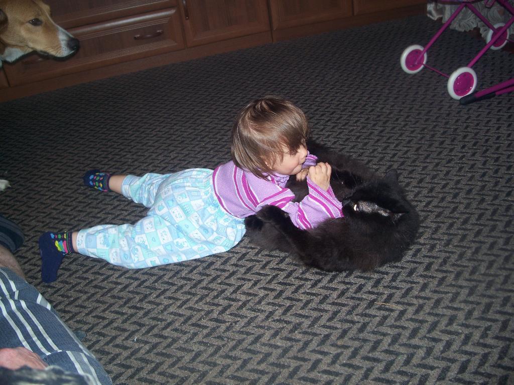 я моя кисуля!. Ребенок и   котенок