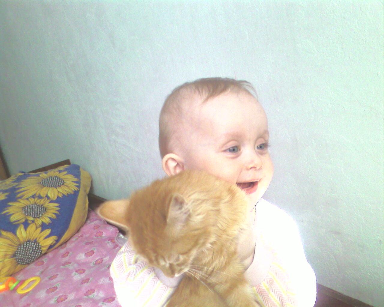 я люблю кису. Ребенок и   котенок