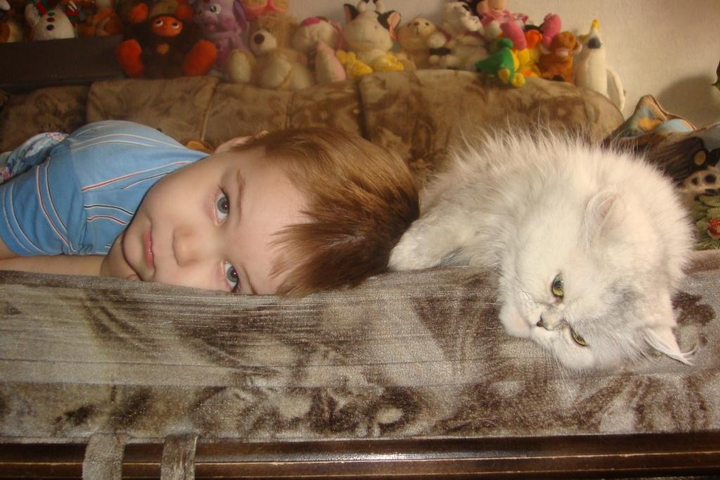 Совместный отдых после совместных игр. Ребенок и   котенок