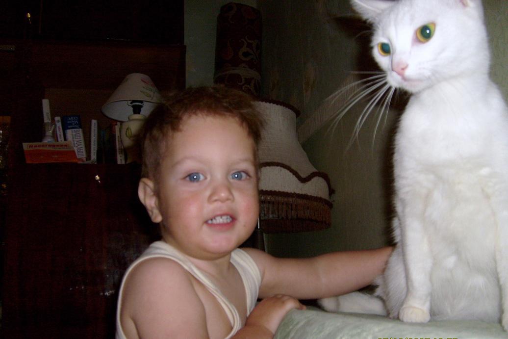 Киса, улыбайся, нас фотографируют!. Ребенок и   котенок