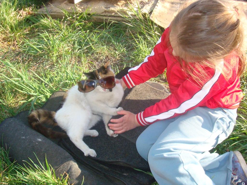 Кошечка в очках. Ребенок и   котенок