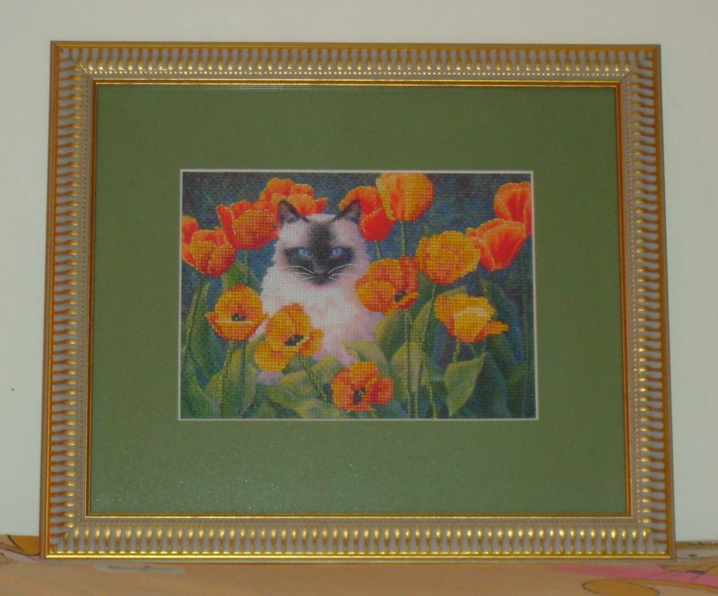Кошка в маках. Рукодельный конкурс 'Дары лета'