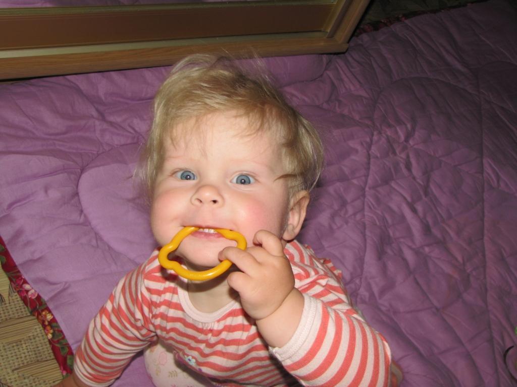 3 богатыря Зубки-зуб. Пробуем на зуб!