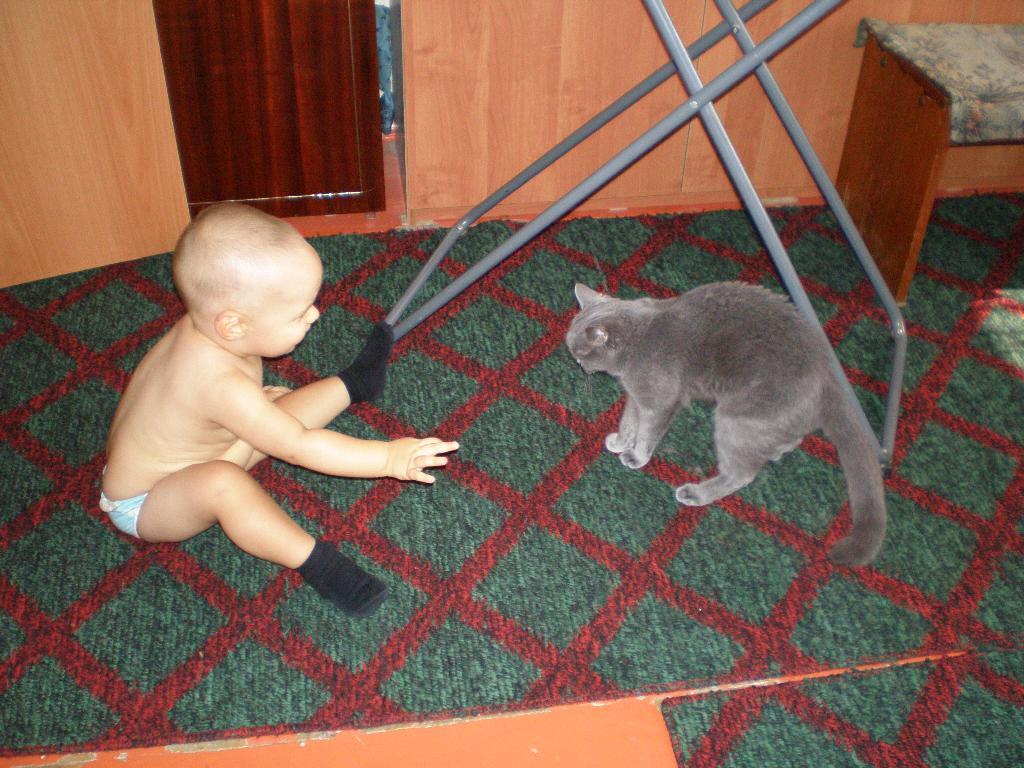 КИСКА, ДАВАЙ ИГРАТЬ...... Ребенок и   котенок