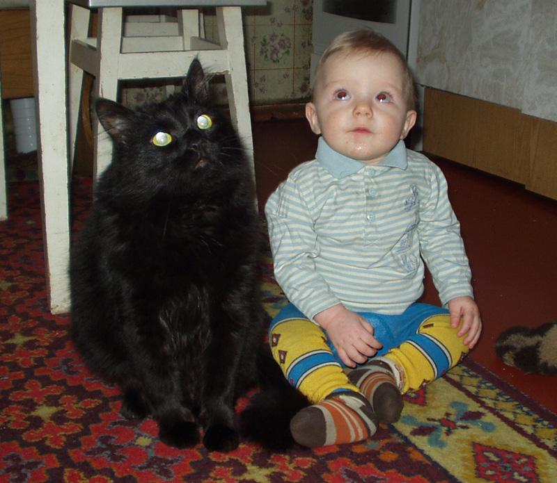 Молочные братья :). Ребенок и   котенок