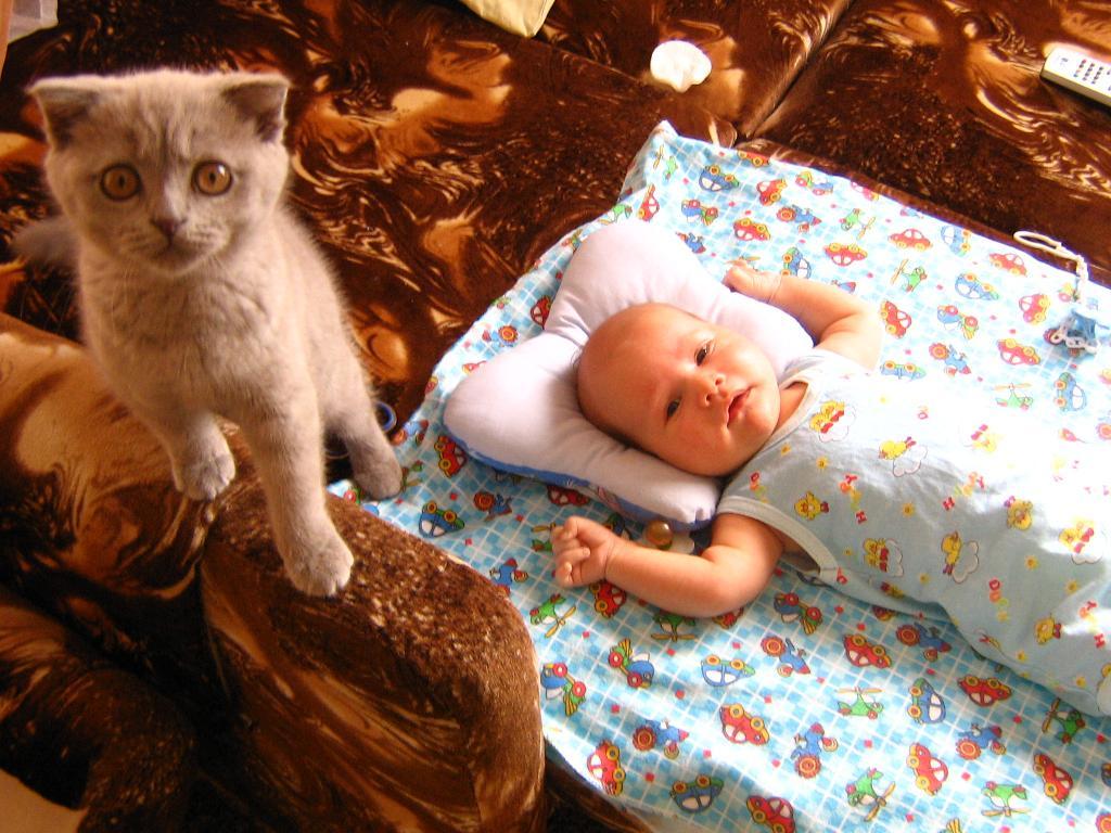 Я и моя мохнатая подружка. Ребенок и   котенок