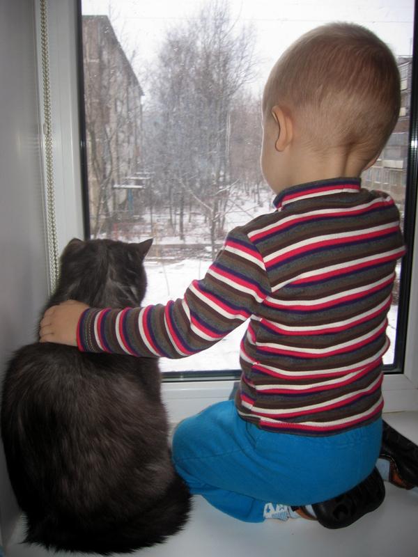 Мы с Романом у окна, наблюдаем.... Ребенок и   котенок