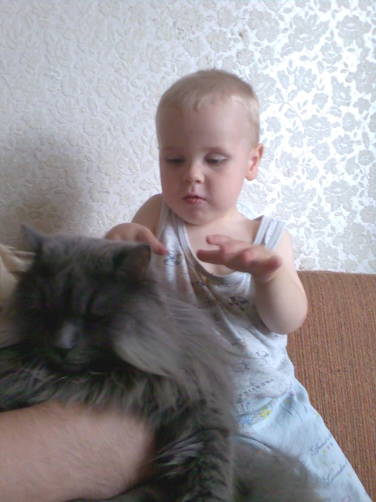 Андрюша с Васей.. Ребенок и   котенок