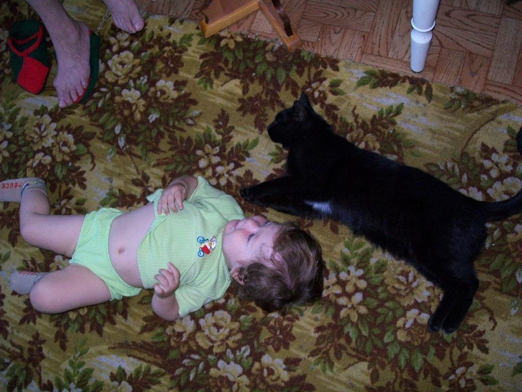 Миляушка и Тишка. Ребенок и   котенок