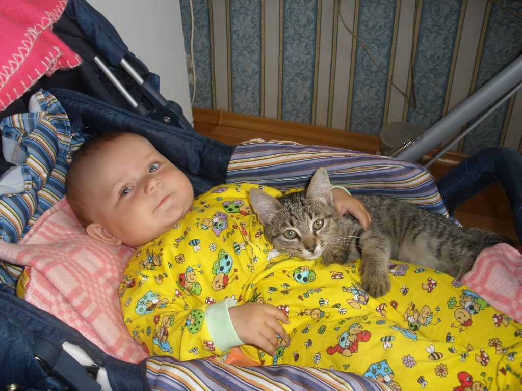 Я и мой кот Мартик.. Ребенок и   котенок