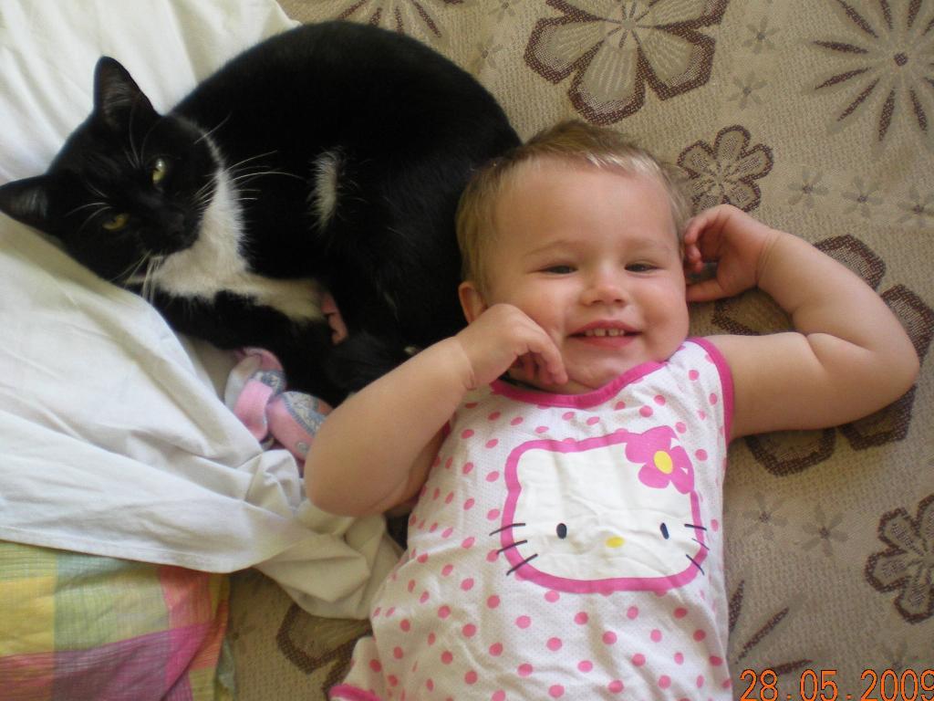 кошечки. Ребенок и   котенок