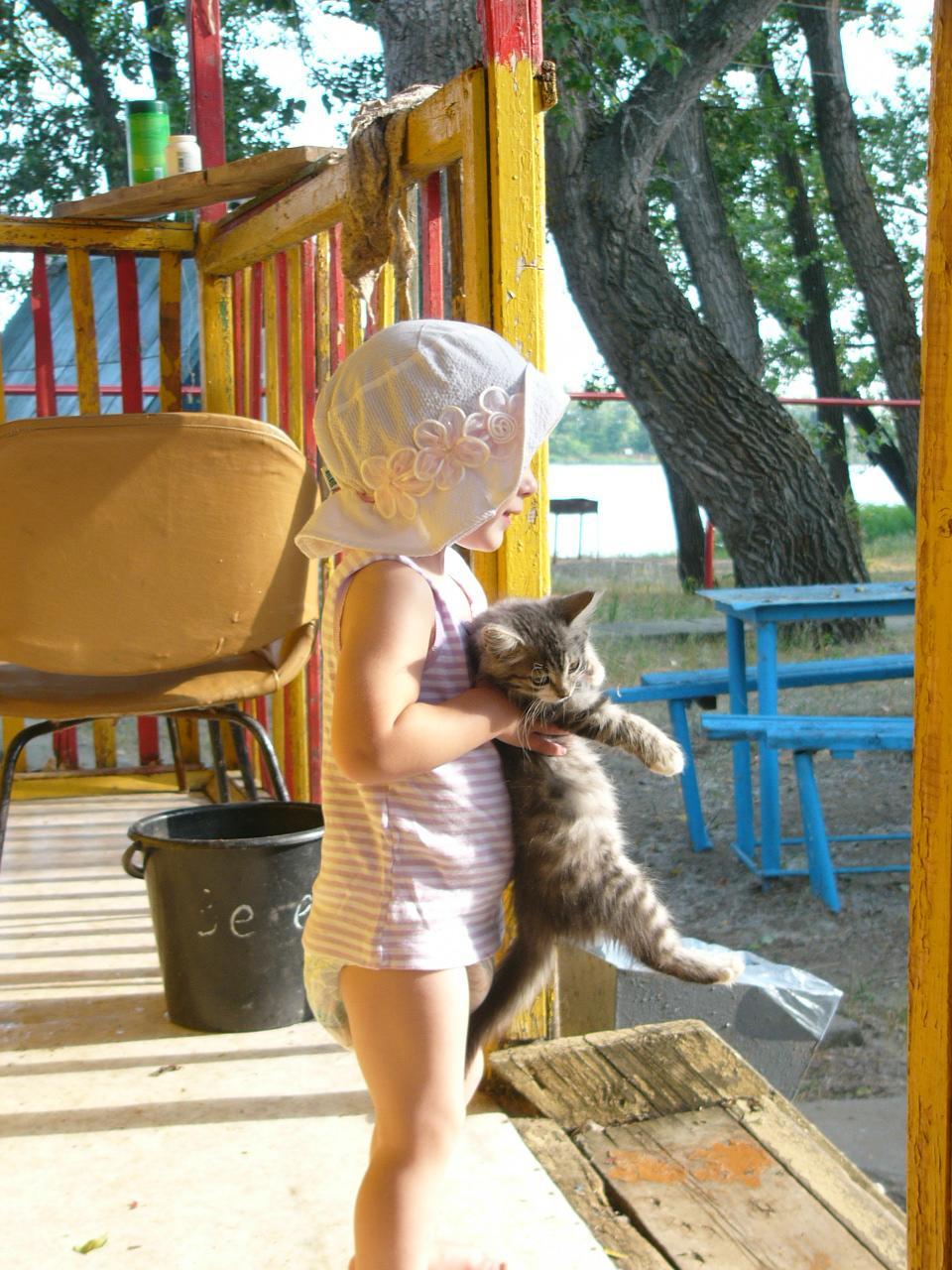 Поймала - моё!. Ребенок и   котенок
