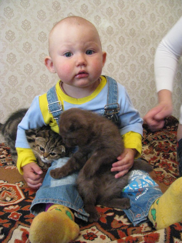 Никита и его друзья. Ребенок и   котенок