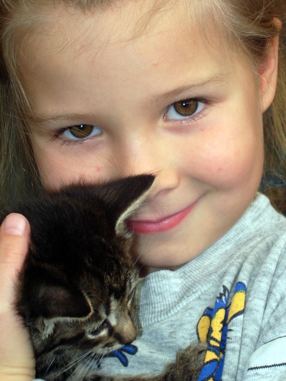 Нежность. Ребенок и   котенок