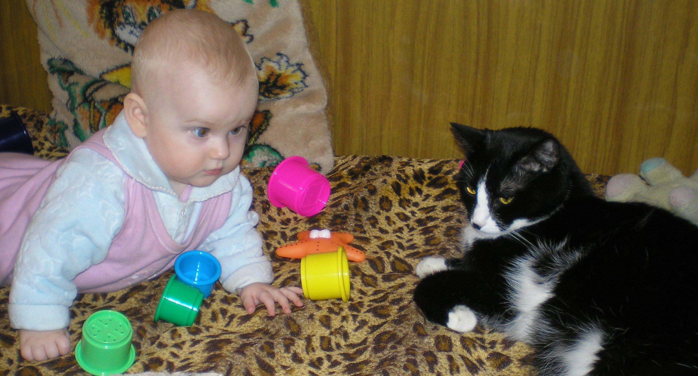 Вместе с Тимкой мы играем: пирамидку собираем! . Ребенок и   котенок