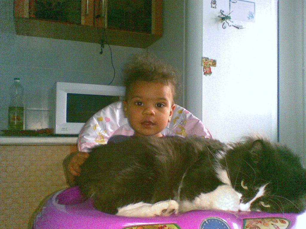 А что сегодня на обед?. Ребенок и   котенок