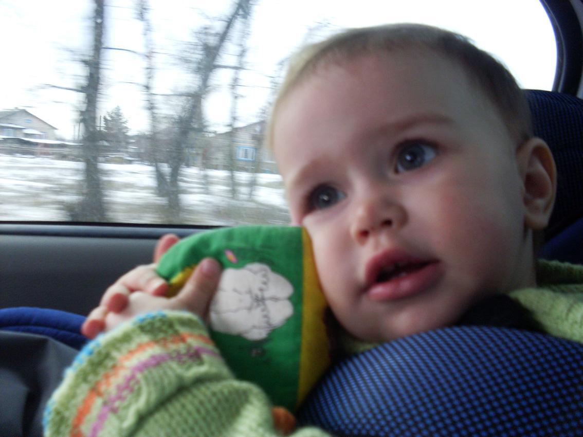 В автокресле и с любимой игрушкой  хоть на край света!. Юные путешественники