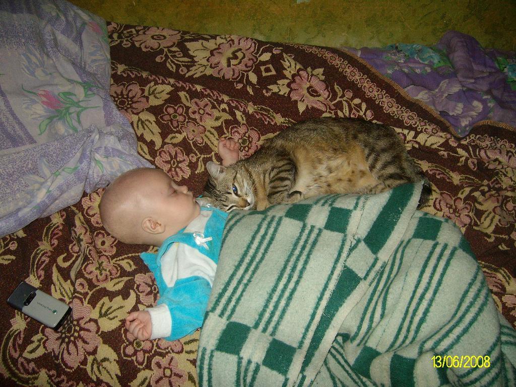 Мишутка с Кисулей))). Ребенок и   котенок