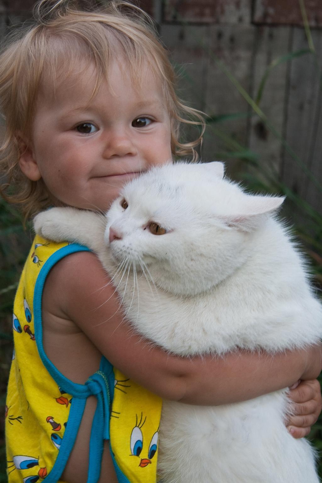 Танго вдвоем. Ребенок и   котенок