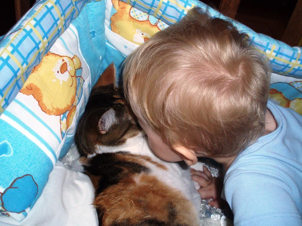 Целуемся. Ребенок и   котенок