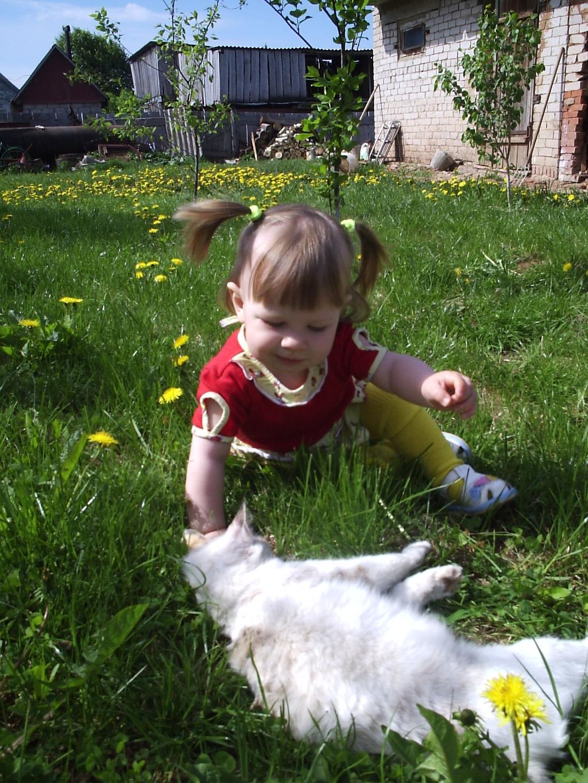 Муркина школа. Ребенок и   котенок